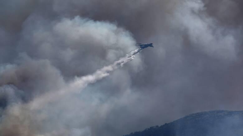 Φωτιά Βίλια: Παρολίγον αεροπορική τραγωδία με το Ilyushin - Προς ΕΔΕ για το περιστατικό