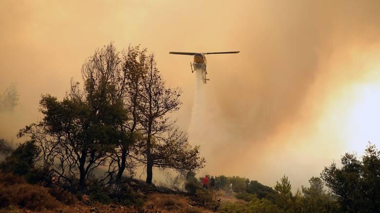 Φωτιά στα Βίλια: Πύρινο μέτωπο απειλεί τους οικισμούς Οινόη και Πανόραμα