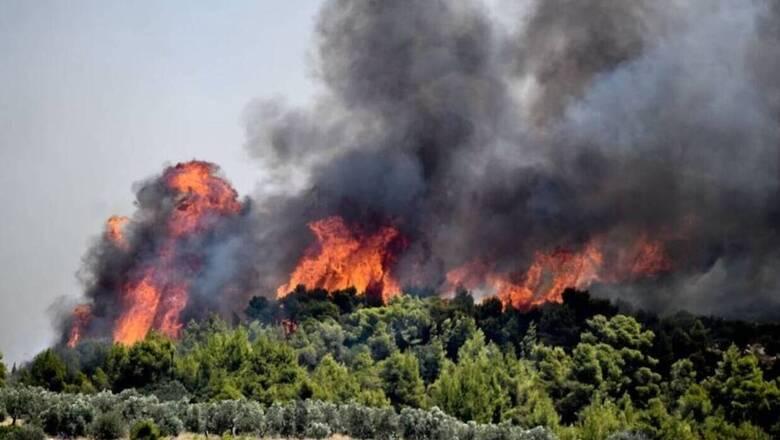 Πολιτική Προστασία: Πολύ υψηλός ο κίνδυνος πυρκαγιάς σε Αττική και Εύβοια την Παρασκευή
