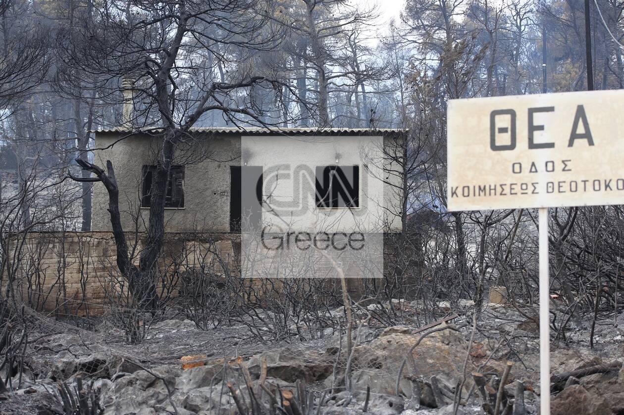 https://cdn.cnngreece.gr/media/news/2021/08/19/278373/photos/snapshot/fotia-thea-2.jpg