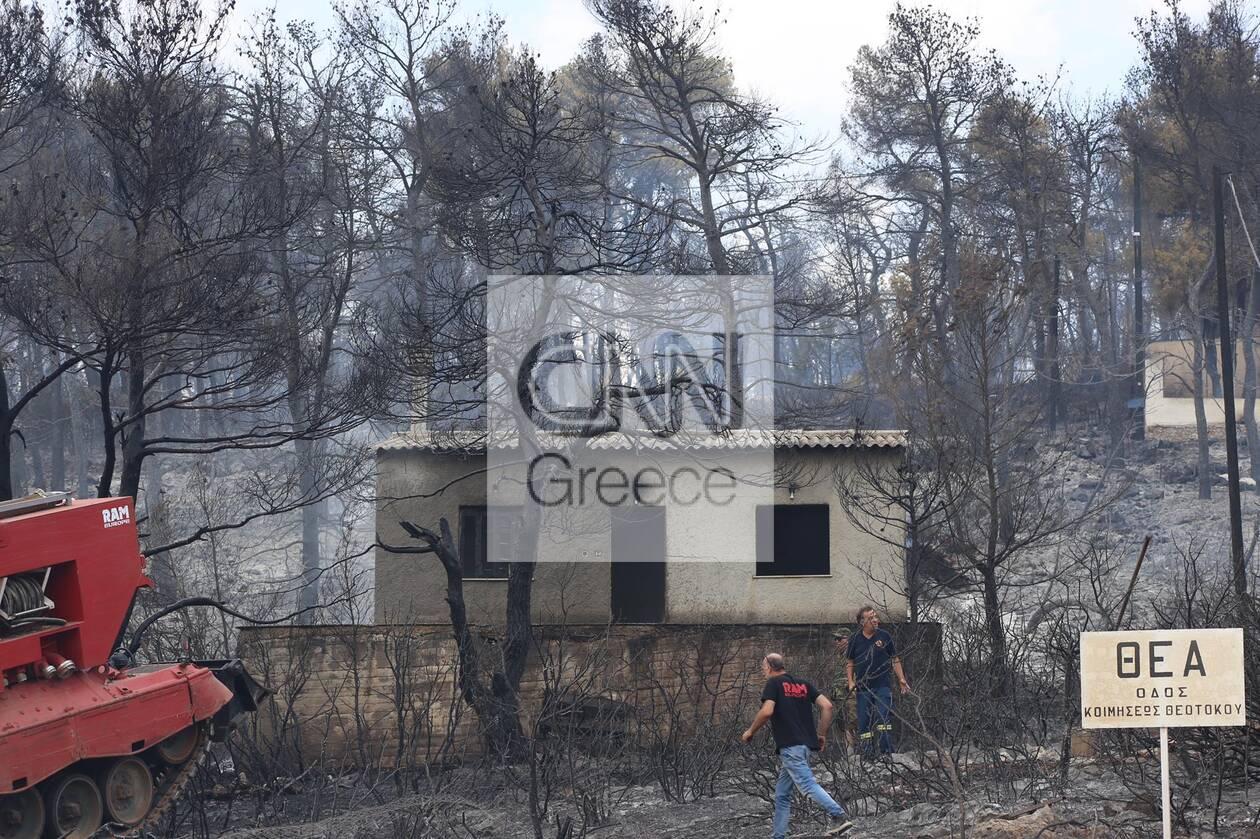 https://cdn.cnngreece.gr/media/news/2021/08/19/278373/photos/snapshot/fotia-thea-3.jpg