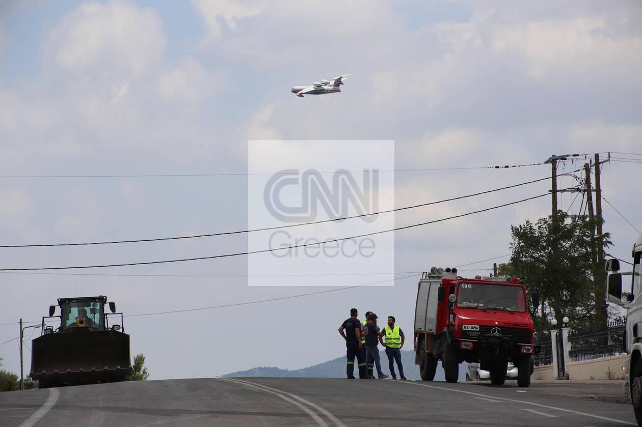 https://cdn.cnngreece.gr/media/news/2021/08/19/278373/photos/snapshot/fotia-vilia-3.jpg