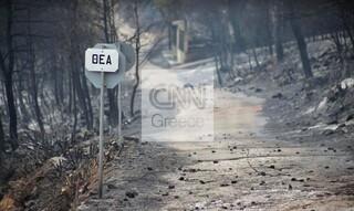 Οδοιπορικό του CNN Greece στους οικισμούς που «άγγιξε» το πύρινο μέτωπο στα Βίλια