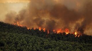 Εθνικό Αστεροσκοπείο Αθηνών: Πού οφείλεται η «έκρηξη» της πυρκαγιάς στα Βίλια