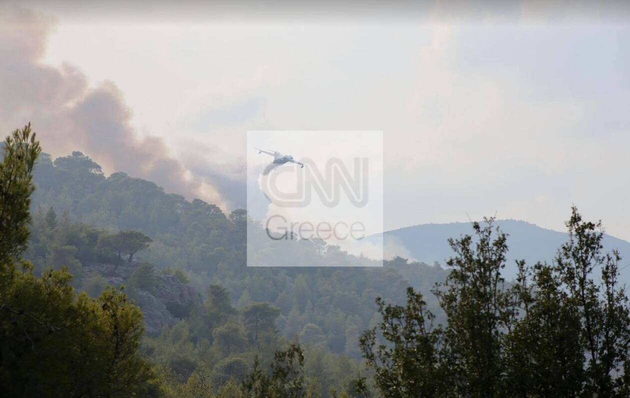 https://cdn.cnngreece.gr/media/news/2021/08/20/278440/photos/snapshot/meg5.jpg