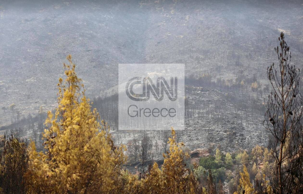 https://cdn.cnngreece.gr/media/news/2021/08/20/278440/photos/snapshot/meg7.jpg