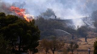 Βρέθηκαν υπολείμματα φωτοβολίδας στην πυρκαγιά του Δασκαλειού Κερατέας - Καταγγελία μάρτυρα