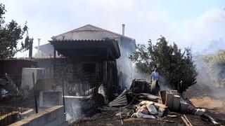 Πυρκαγιές: Καταβλήθηκαν οι πρώτες αποζημιώσεις - Πάνω από 3,5 εκατ. στους δικαιούχους