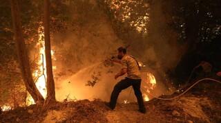 Φωτιές: 43% αύξηση του αριθμού δασικών πυρκαγιών και 500% αύξηση της καμένης έκτασης