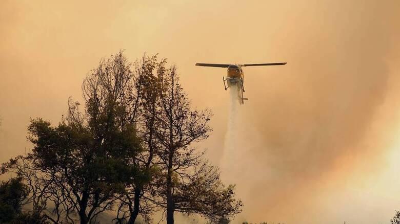 Φωτιά στην Ιεράπετρα: Ισχυρή δύναμη της πυροσβεστικής στην περιοχή
