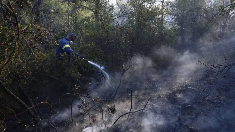 Φωτιές στο Θεολόγο: Ελεύθερος με περιοριστικούς όρους ο 14χρονος