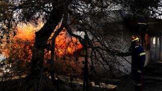 Κατάσταση συναγερμού για ακραίο κίνδυνο πυρκαγιών την Κυριακή