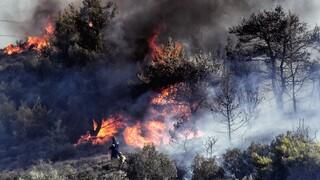 Ακραίος κίνδυνος για πυρκαγιά σήμερα σε Αττική και Εύβοια - Επί ποδός οι Αρχές