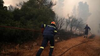 Φωτιά στο Αργάσι Ζακύνθου: Ελεύθερος ένας ύποπτος - Δεν βρέθηκαν ενοχοποιητικά στο σπίτι του