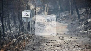 Στάχτη 94.000 στρέμματα στη Δυτική Αττική - Πολωνοί και Ρουμάνοι πυροσβέστες επιτηρούν τα καμένα