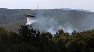 Συνολικά 34 δασικές πυρκαγιές το τελευταίο 24ωρο - Διαρκείς περιπολίες