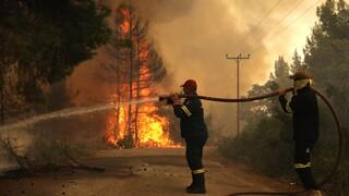 Μεγάλη φωτιά στην Κάρυστο: Εκκενώθηκαν δύο οικισμοί και το Μαρμάρι