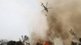 Μεγάλη φωτιά στην Κάρυστο: Εκκενώσεις και ισχυροί άνεμοι - Στη μάχη εννέα ελικόπτερα