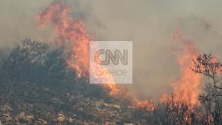 Μαίνεται η φωτιά στα Βίλια: Κάηκαν σπίτια - Εμπρησμό καταγγέλλει ο δήμαρχος Μάνδρας