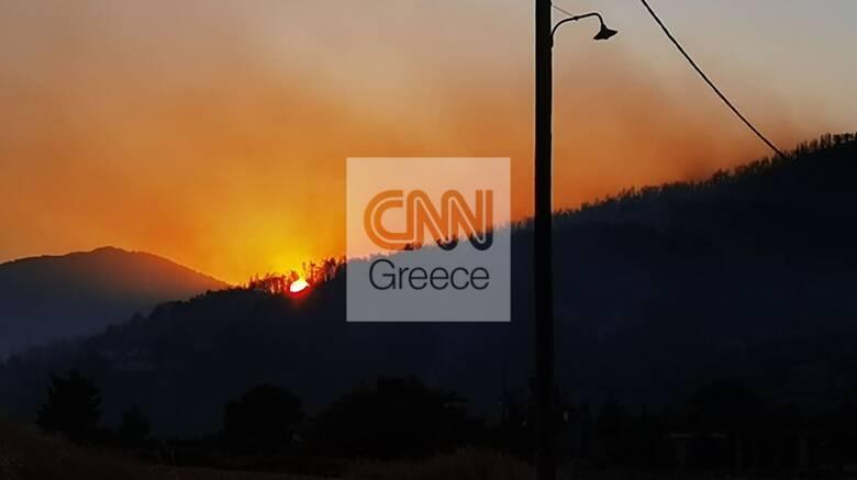 Σε ύφεση η φωτιά στα Βίλια: Ισχυρές δυνάμεις της Πυροσβεστικής σε Κάζα καιΠροφήτη Ηλία