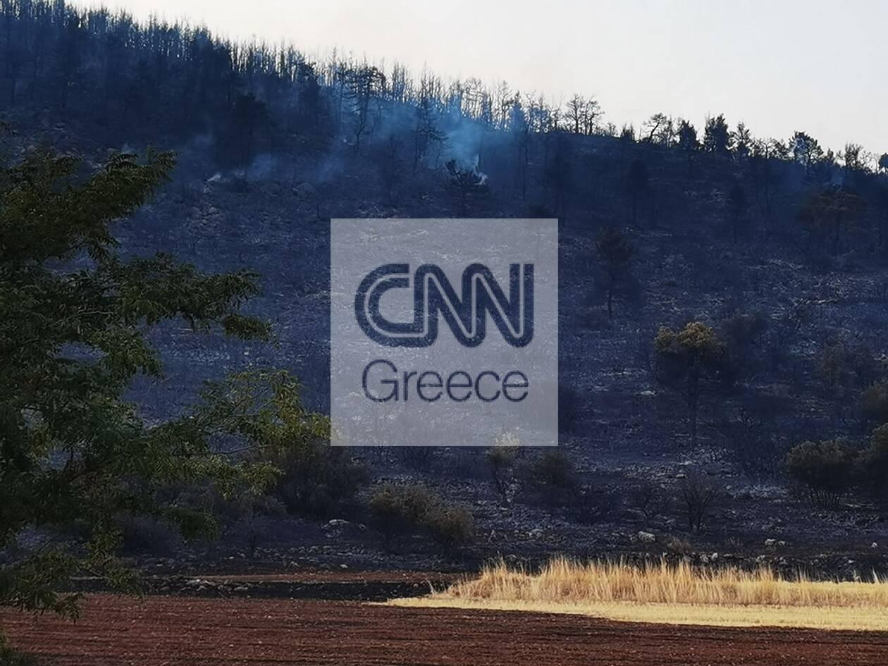 https://cdn.cnngreece.gr/media/news/2021/08/23/278855/photos/snapshot/fotia-vilia-2-84.jpg