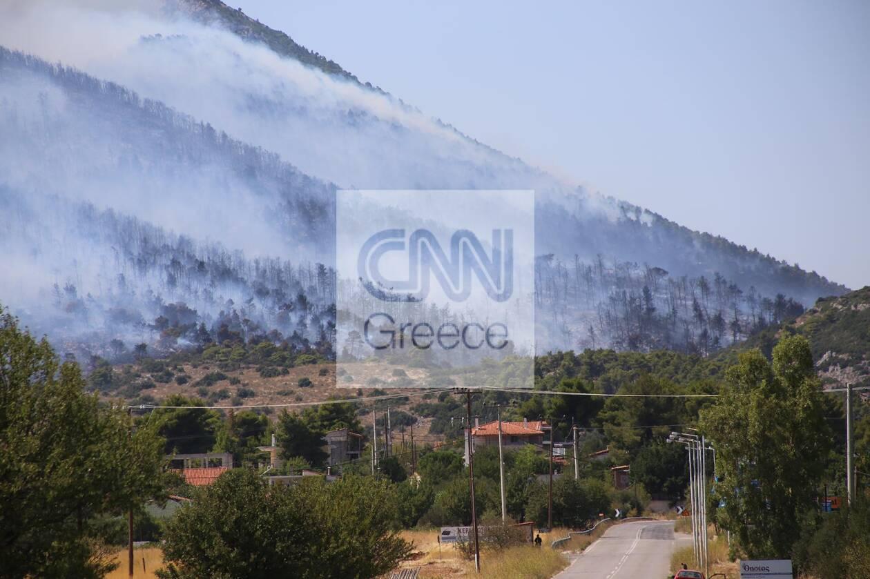 https://cdn.cnngreece.gr/media/news/2021/08/23/278855/photos/snapshot/fotia-vilia-9.jpg