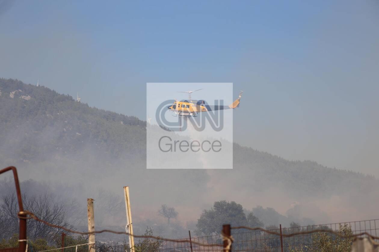 https://cdn.cnngreece.gr/media/news/2021/08/23/278869/photos/snapshot/fotia-vilia-1.jpg