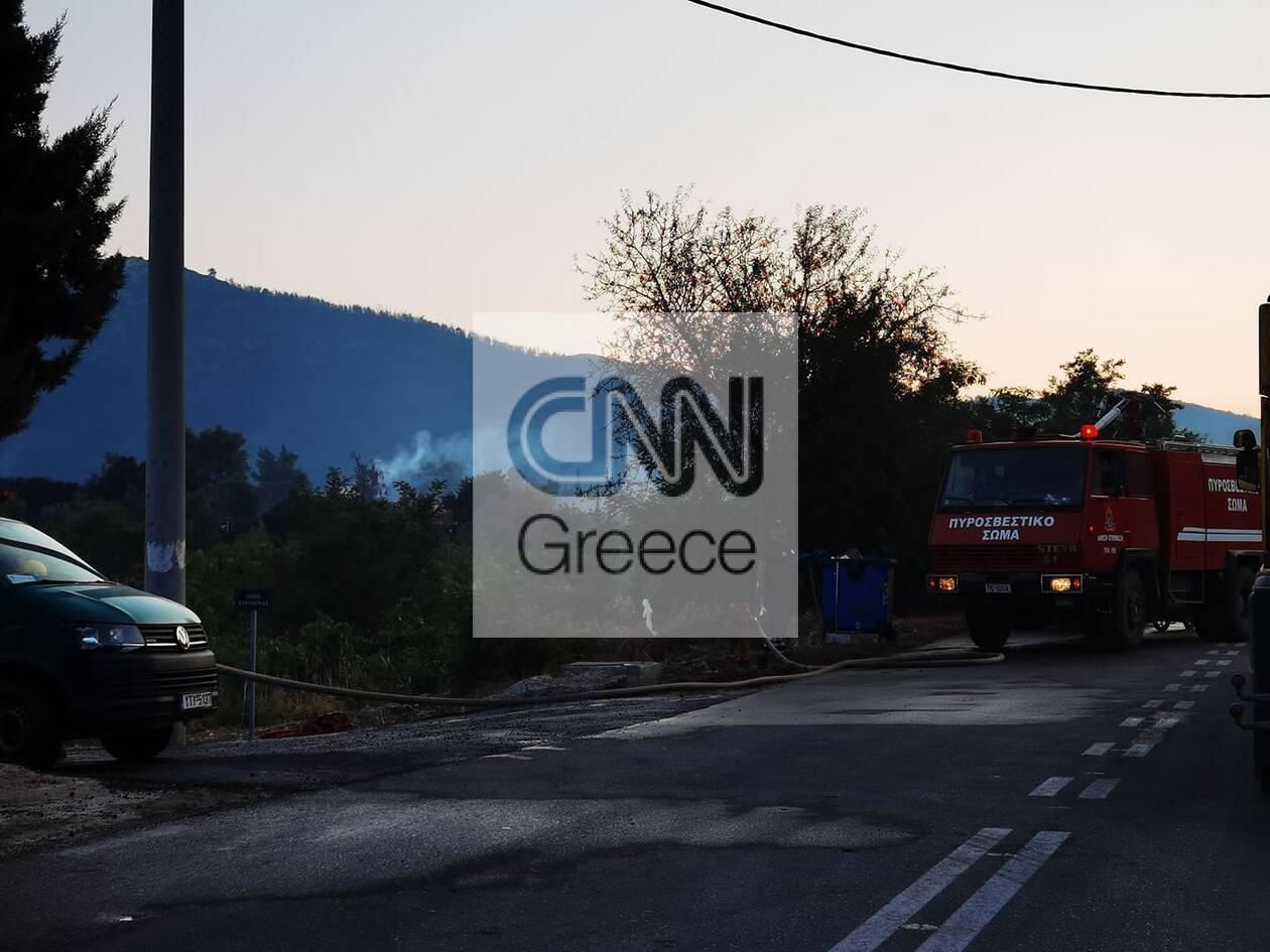https://cdn.cnngreece.gr/media/news/2021/08/23/278869/photos/snapshot/fotia-vilia-3-87.jpg