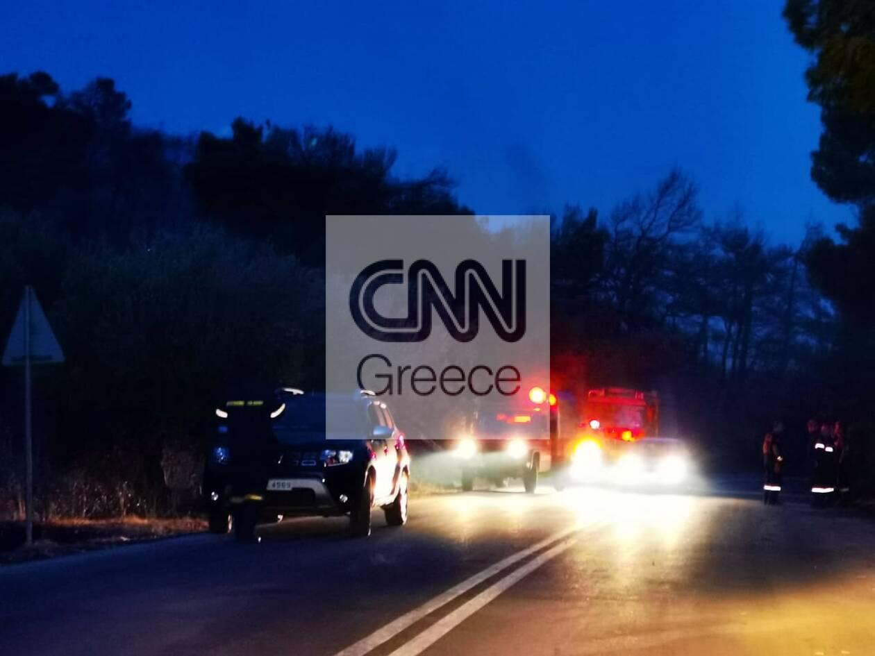 https://cdn.cnngreece.gr/media/news/2021/08/23/278869/photos/snapshot/fotia-vilia-6-58.jpg