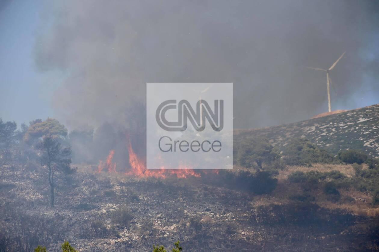 https://cdn.cnngreece.gr/media/news/2021/08/23/278869/photos/snapshot/fotia-vilia-7.jpg