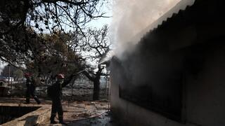 Φωτιά στα Βίλια: Συνεχίζουν να επιχειρούν ισχυρές πυροσβεστικές δυνάμεις - Σε ύφεση οι φλόγες