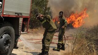 Ζαχαριάδης: Οι δηλώσεις του κ. Σπανού για εντολές μη κατάσβεσης στην Εύβοια προκαλούν σοκ