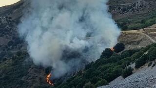 Φωτιά στο Λασίθι, στον δρόμο προς Κερά