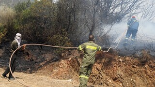 Περιφερειάρχης Στερεάς Ελλάδας: Ουδέποτε ισχυρίστηκα ότι δεν ήθελαν να σβήσουν τη φωτιά στην Εύβοια