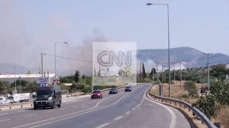 Φωτιά στο Μαρκόπουλο Αττικής: Συναγερμός στην Πυροσβεστική