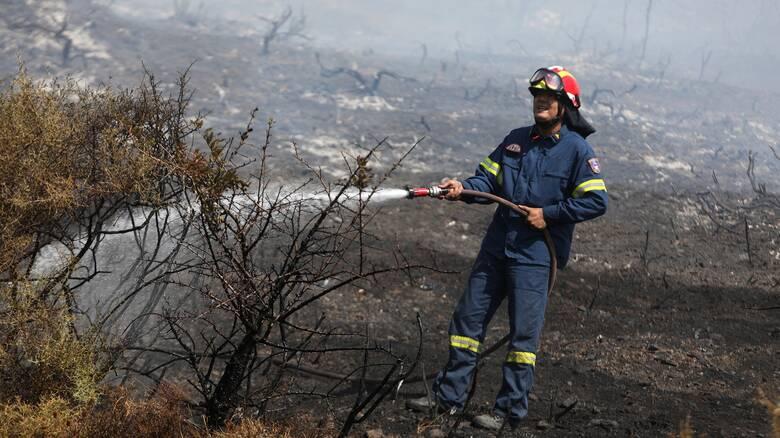 Φωτιά Μαρκόπουλο: Υπό μερικό έλεγχο το μέτωπο - Επί ποδός για αναζωπυρώσεις