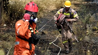 Σε εξέλιξη η φωτιά στην Ηλεία - Χωρίς ενεργό μέτωπο