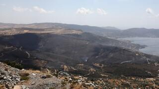 Φωτιά στην Εύβοια: Στάχτη το ένα τρίτο των δασών