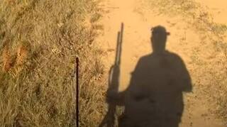Πεντέλη: Αντίθετοι οι Δήμοι στην απόφαση του Δασαρχείου για το κυνήγι αγριογούρουνου