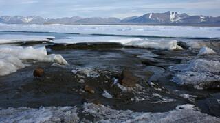 Γροιλανδία: Ανακαλύφθηκε το βορειότερο και πιο μικροσκοπικό νησί του κόσμου