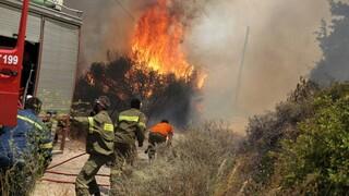 Φωτιά Σέρρες: Σε εξέλιξη η πυρκαγιά στην Αλιστράτη - Συνεχείς ρίψεις νερού από αέρος