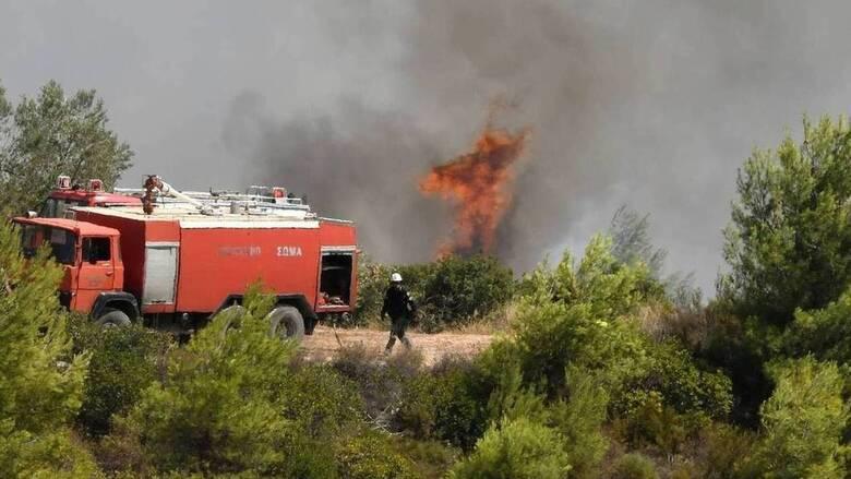 Φωτιά σε δύσβατο σημείο στο Μαστιχάρι της Κω