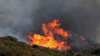 Φωτιά μαίνεται στο Δίστομο Βοιωτίας - Μήνυμα 112 για ετοιμότητα των πολιτών