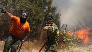 Σε ύφεση η φωτιά στο Δίστομο Βοιωτίας - Παραμένουν σε επιφυλακή οι πυροσβεστικές δυνάμεις