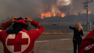 Ο Ελληνικός Ερυθρός Σταυρός δίπλα στους μαθητές των πυρόπληκτων περιοχών