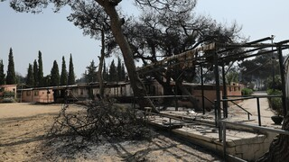 Φωτιά στη Βαρυμπόμπη: Υπέκυψε 55χρονος εγκαυματίας μετά από πολυήμερη παραμονή στη ΜΕΘ