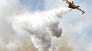 Ισπανία-Πυρκαγιές: Εκκενώνονται ακόμη δύο πόλεις στην Ανδαλουσία