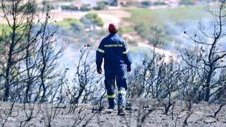 Φωτιά στην Κερατέα - Κινητοποιήθηκαν επίγειες και εναέριες δυνάμεις