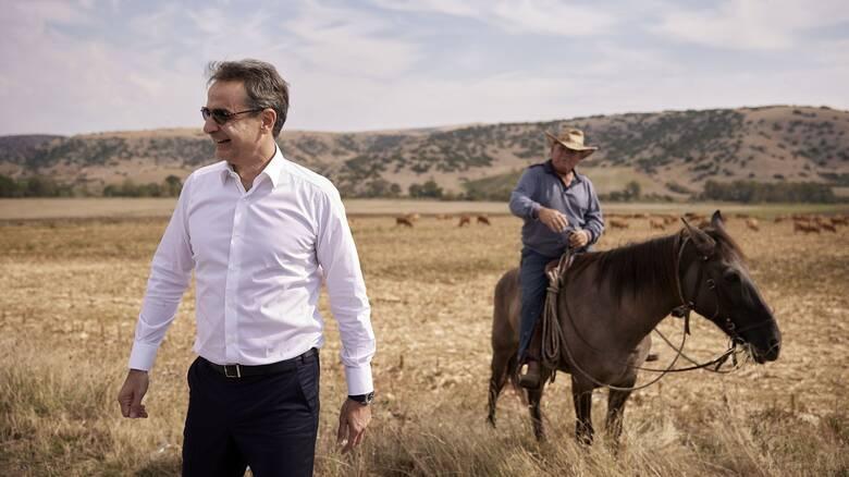 Δαμάσι: Τι λέει ο κτηνοτρόφος «Ντάλτον» για τη συνάντησή του με τον Μητσοτάκη