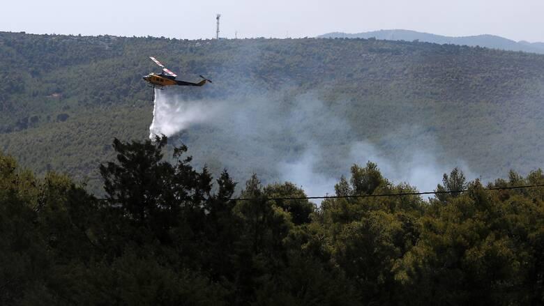 Φωτιά στην Ανάβυσσο - Μεγάλη κινητοποίηση της Πυροσβεστικής